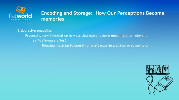 Encoding and Storage:  How Our Perceptions Become memories