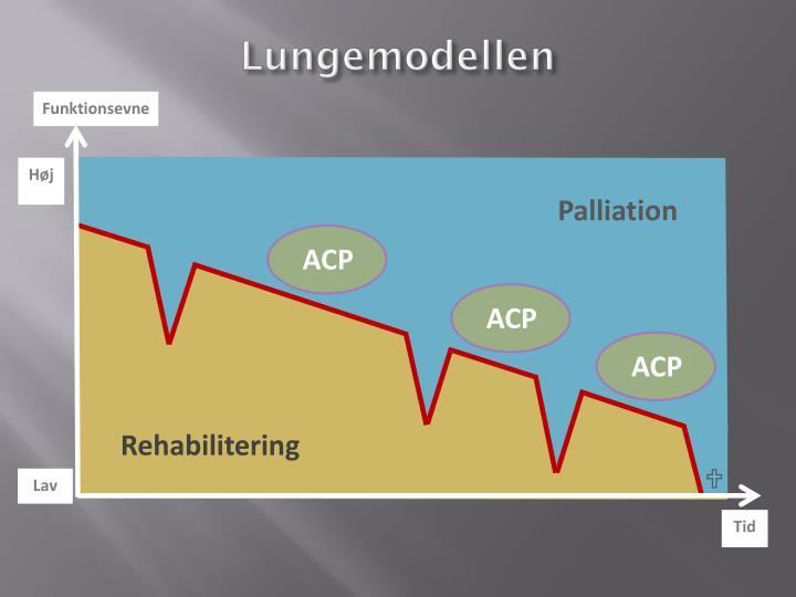 Lungemodellen