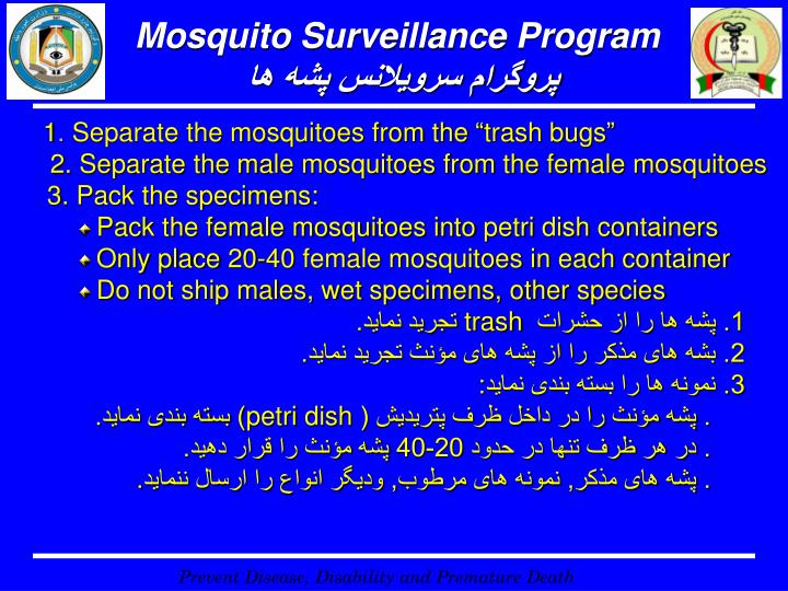 Mosquito Surveillance Program