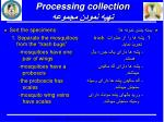 processing collection