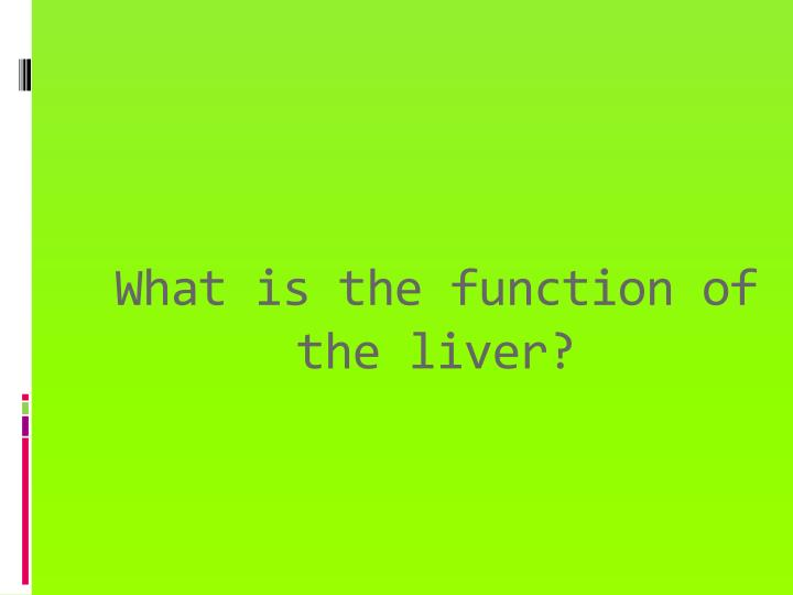What is the function of the liver?