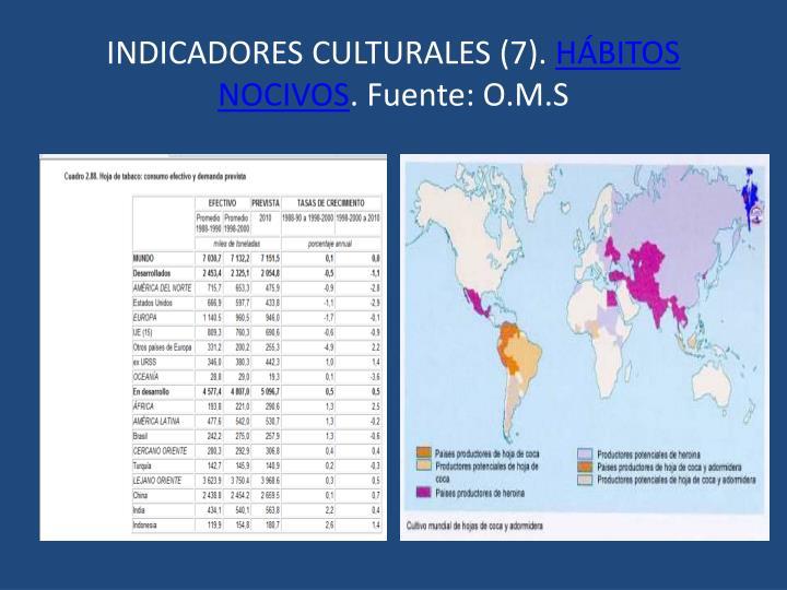 INDICADORES CULTURALES (7).
