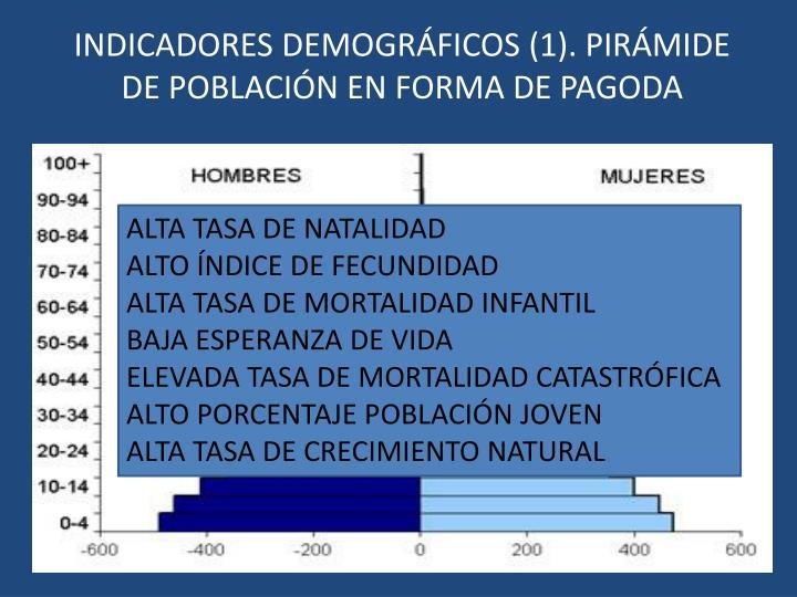 INDICADORES DEMOGRÁFICOS (1). PIRÁMIDE DE POBLACIÓN EN FORMA DE PAGODA