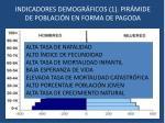 indicadores demogr ficos 1 pir mide de poblaci n en forma de pagoda