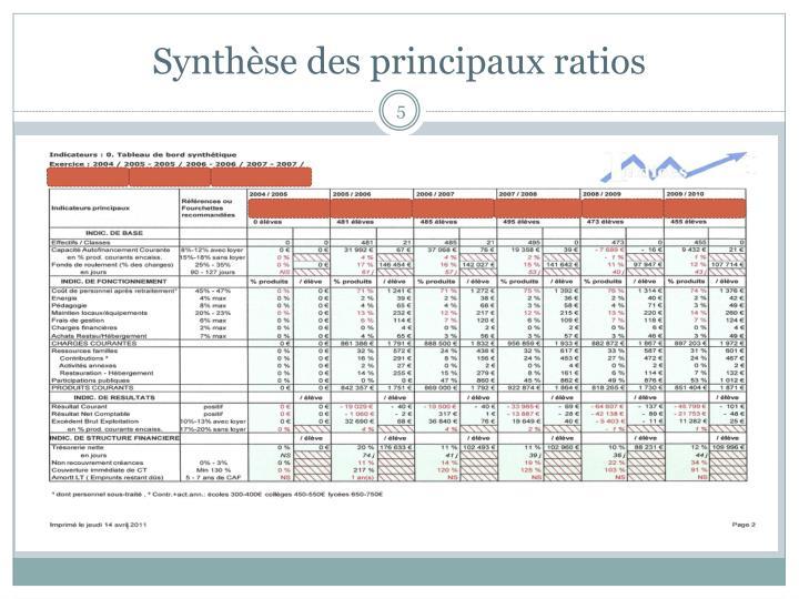 Synthèse des principaux ratios