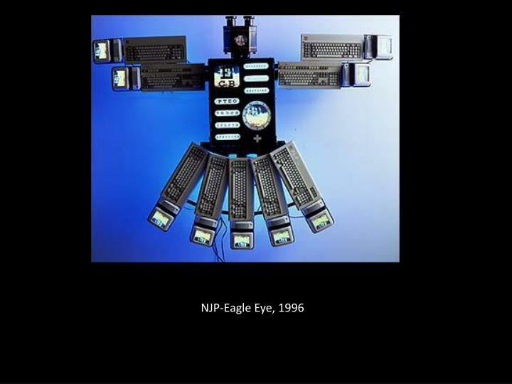 NJP-Eagle Eye, 1996