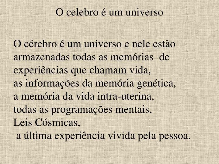 O celebro é um universo