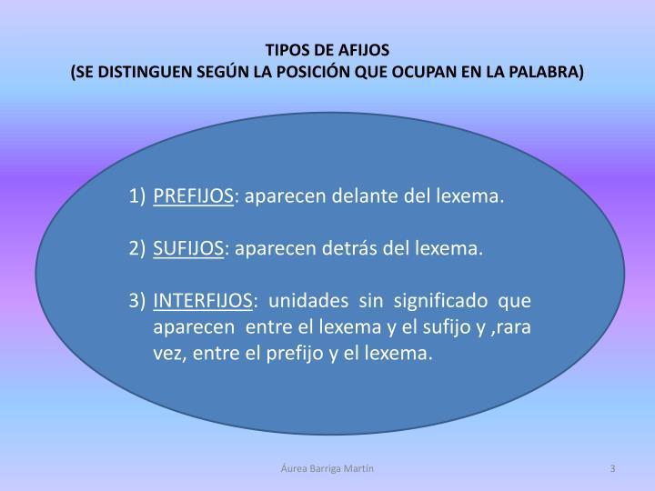 TIPOS DE AFIJOS