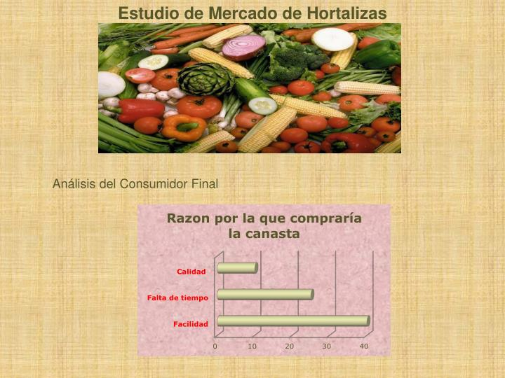 Estudio de Mercado de Hortalizas