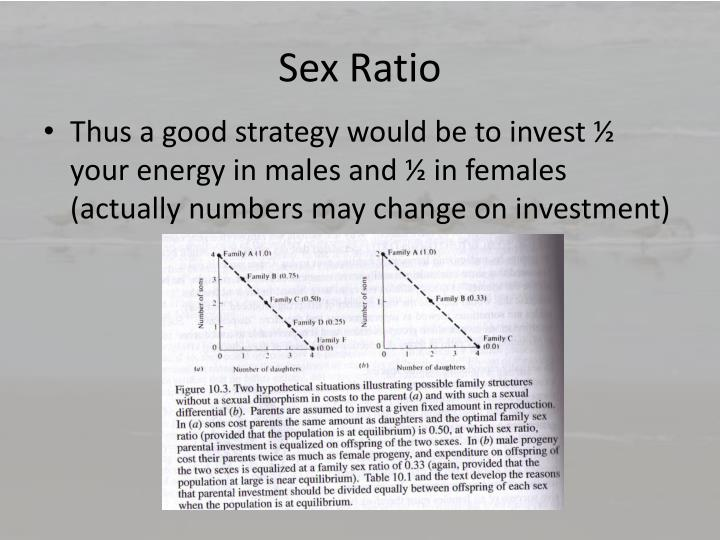Primary Sex Ratio 6