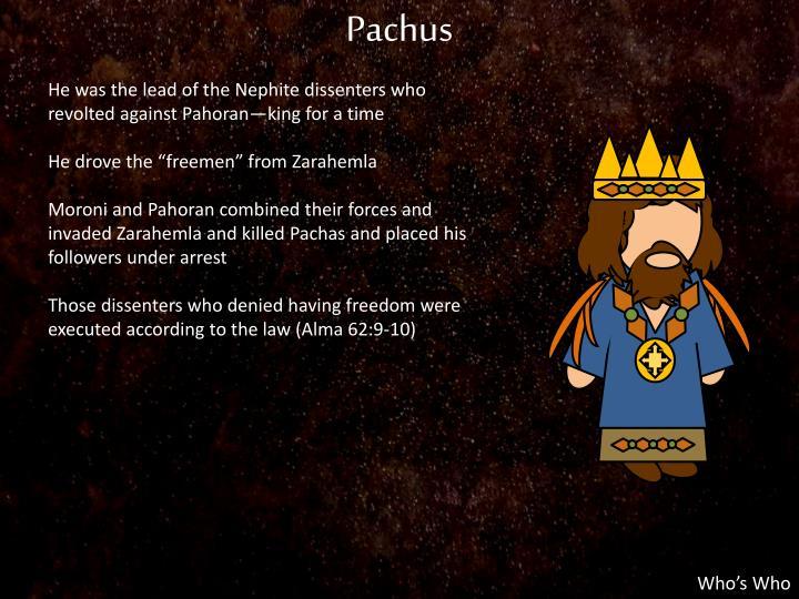 Pachus