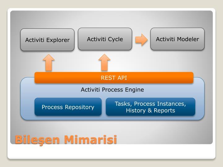 Activiti Cycle