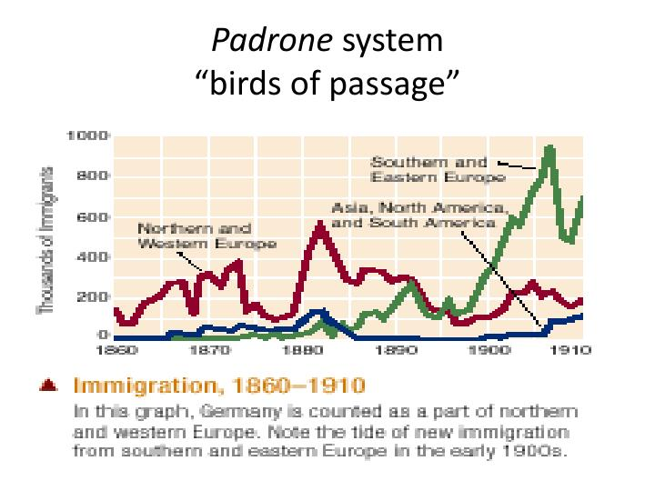 Padrone system birds of passage