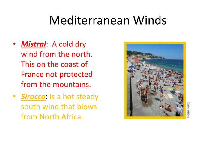 Mediterranean Winds