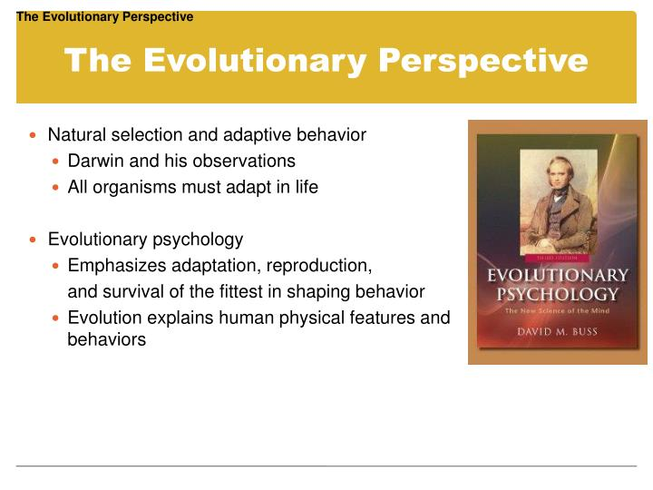 The evolutionary perspective1