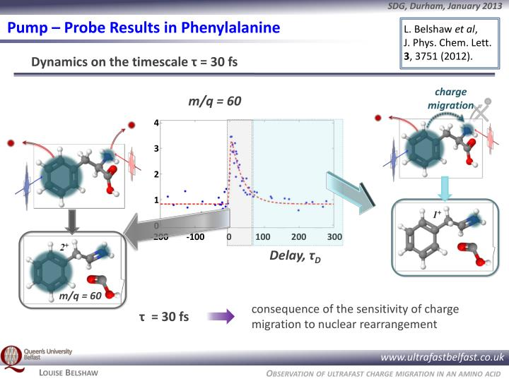Pump – Probe Results in Phenylalanine