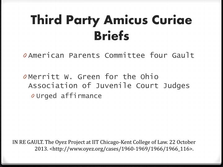 Third Party Amicus Curiae Briefs