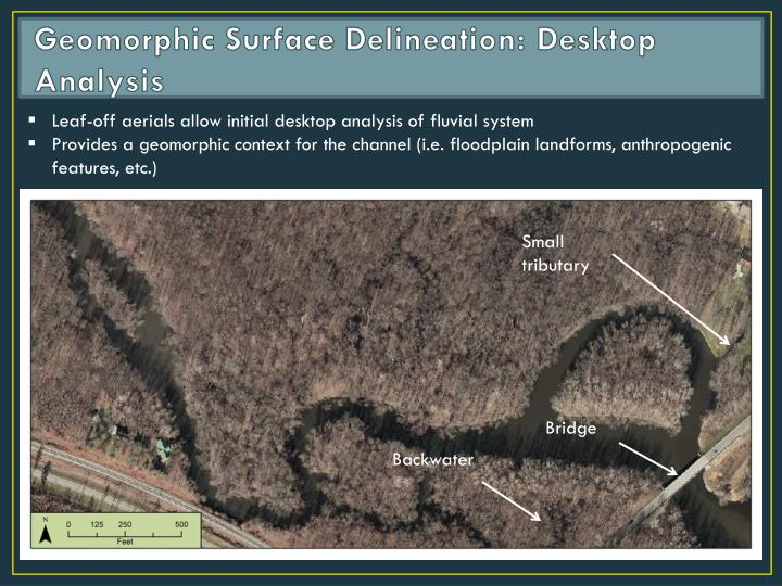Geomorphic Surface Delineation: Desktop Analysis