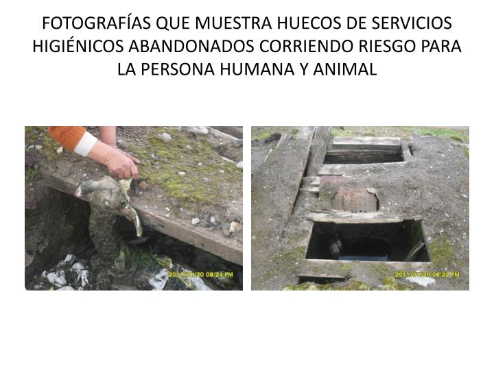 FOTOGRAFÍAS QUE MUESTRA HUECOS DE SERVICIOS HIGIÉNICOS ABANDONADOS CORRIENDO RIESGO PARA LA PERSONA HUMANA Y ANIMAL