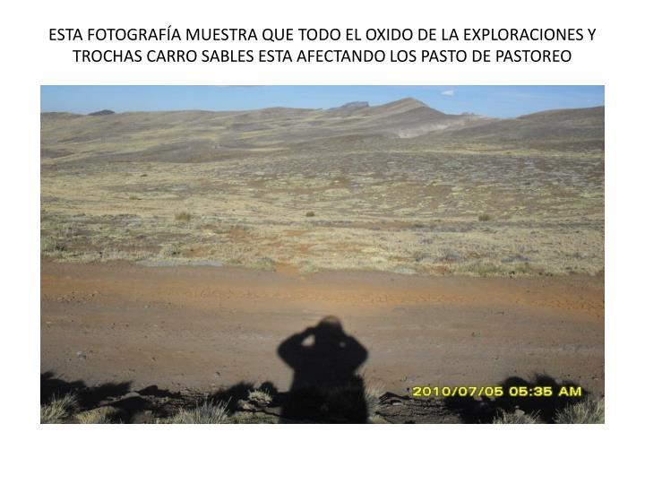 ESTA FOTOGRAFÍA MUESTRA QUE TODO EL OXIDO DE LA EXPLORACIONES Y TROCHAS CARRO SABLES ESTA AFECTANDO LOS PASTO DE PASTOREO