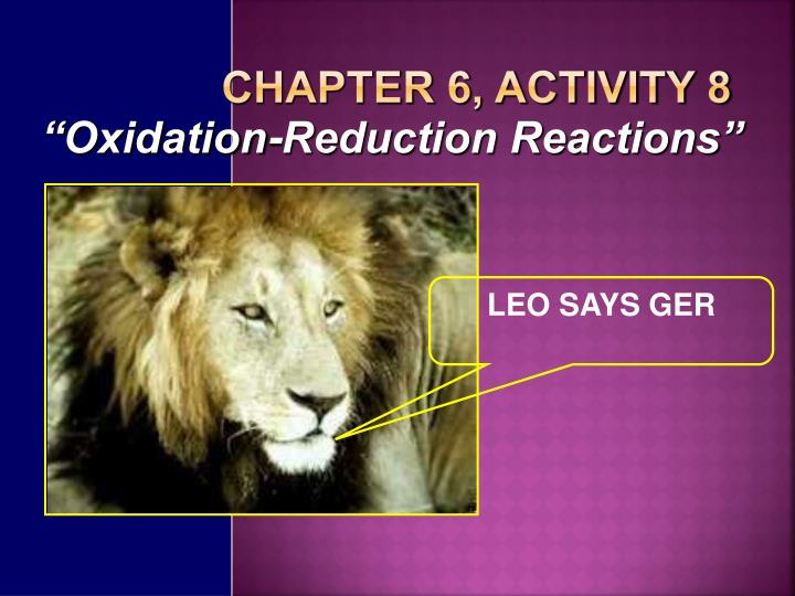 Chapter 6, Activity 8