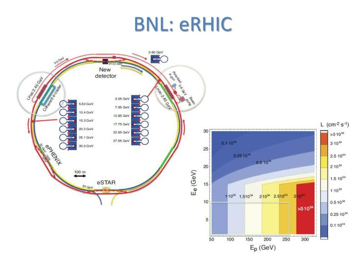 BNL: eRHIC