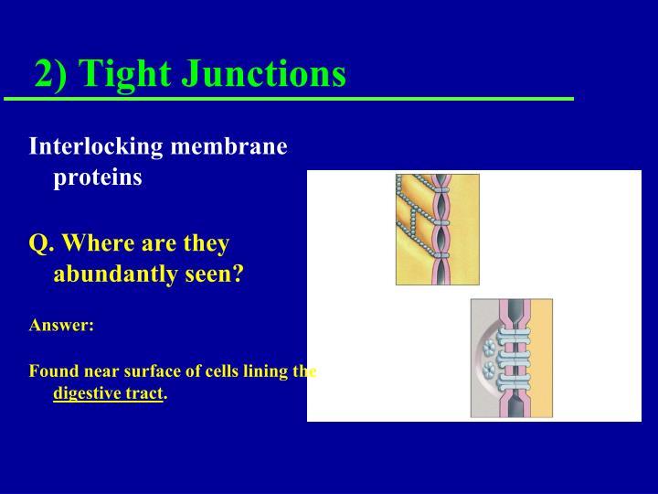 Interlocking membrane proteins