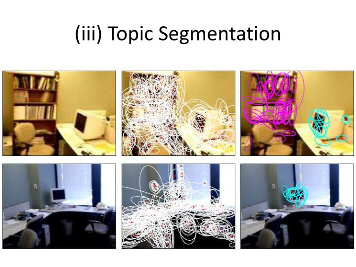 (iii) Topic Segmentation