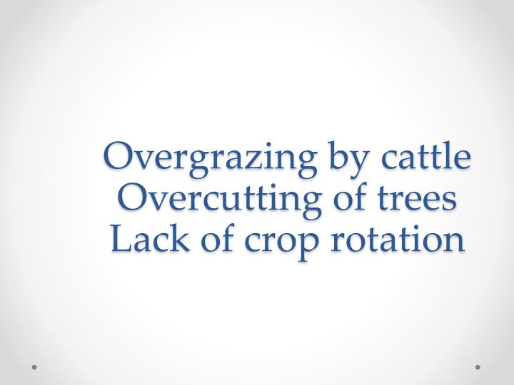 Overgrazing by cattle