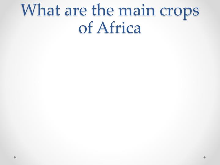 What are the main crops of Africa