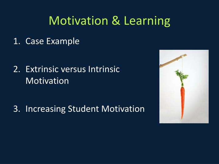 Motivation & Learning