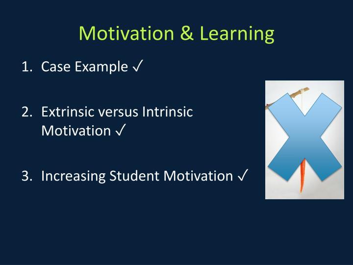 Motivation & Learning