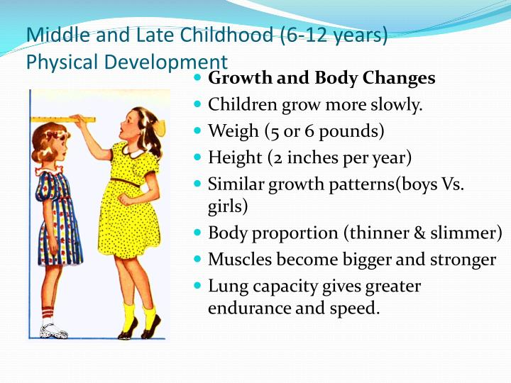 Middle and late childhood 6 12 years physical development