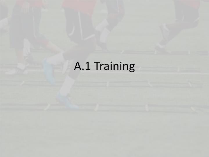 A.1 Training