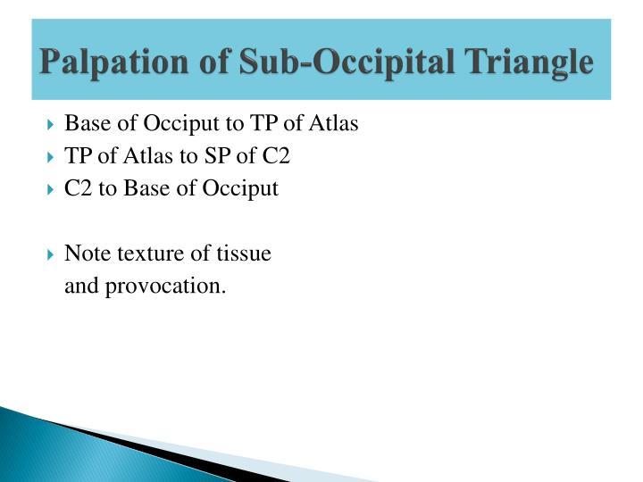 Palpation of Sub-Occipital Triangle