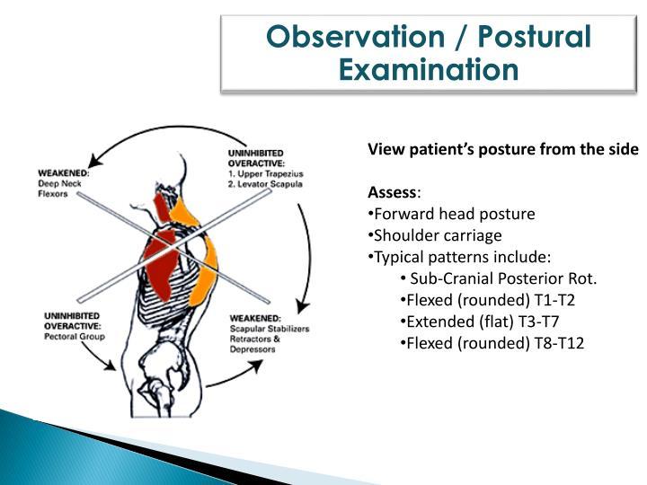 Observation / Postural
