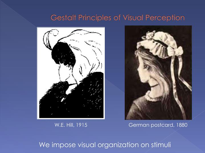 We impose visual organization on stimuli
