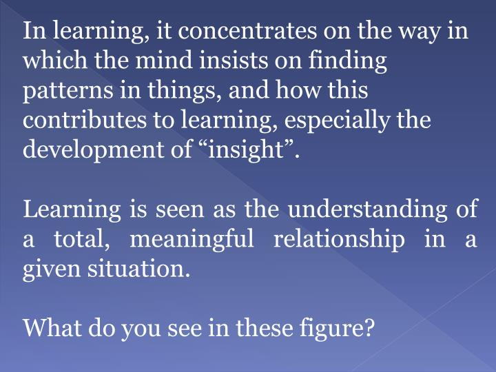 "In learning, it concentrates on the way in which the mind insists on finding patterns in things, and how this contributes to learning, especially the development of ""insight""."