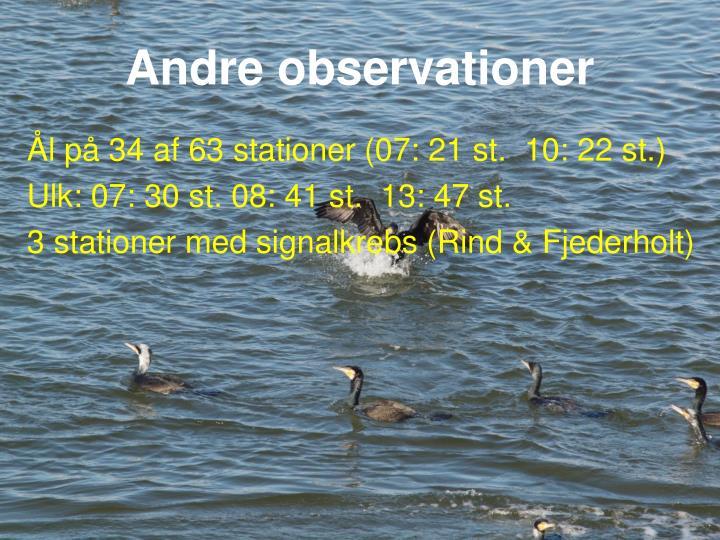 Andre observationer