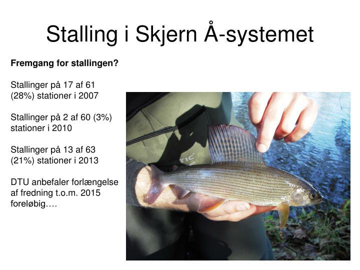 Stalling i Skjern Å-systemet