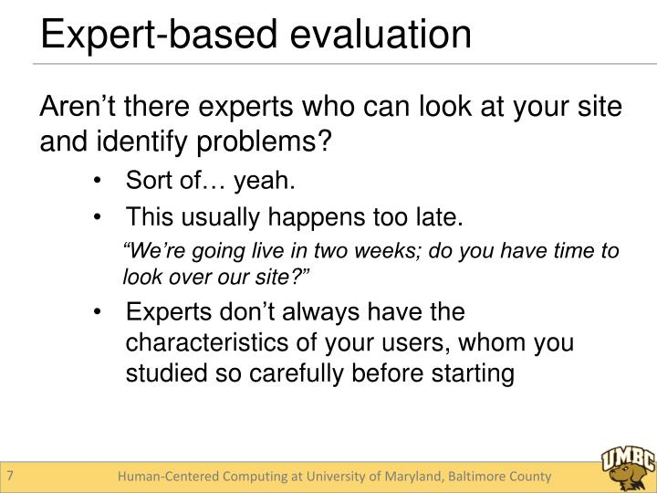 Expert-based evaluation