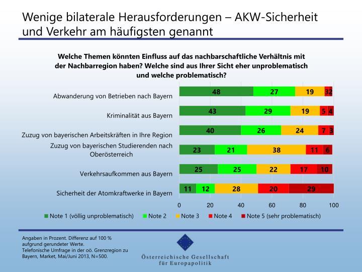 Wenige bilaterale Herausforderungen – AKW-Sicherheit und Verkehr am häufigsten genannt