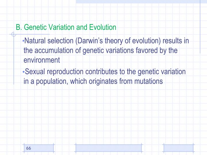 B. Genetic Variation and Evolution