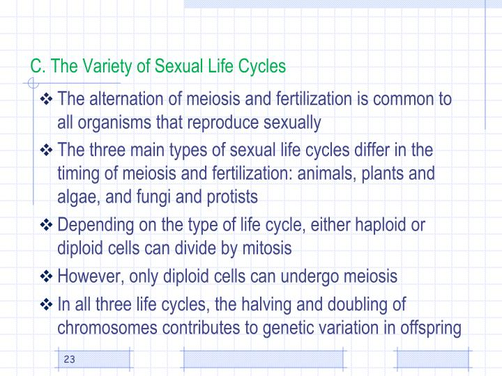 C. The Variety of Sexual Life Cycles
