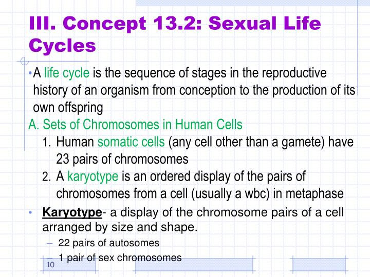 III. Concept 13.2: Sexual Life Cycles