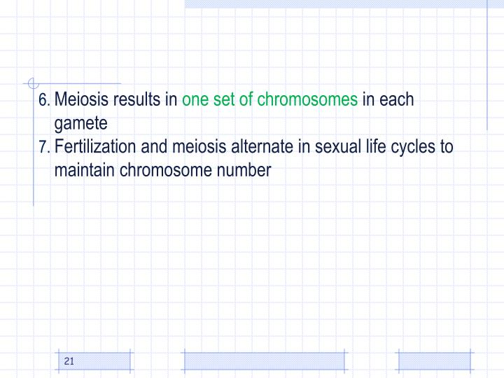 Meiosis results in
