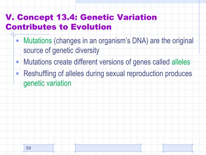 V. Concept 13.4: Genetic Variation Contributes to Evolution