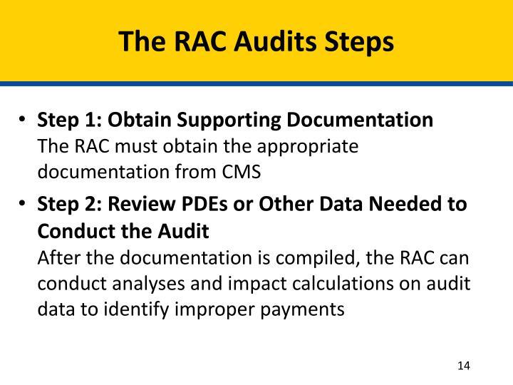 The RAC Audits Steps