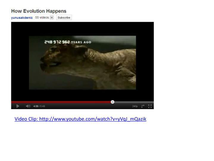 Video Clip: http://www.youtube.com/watch?v=yVqJ_mQazik