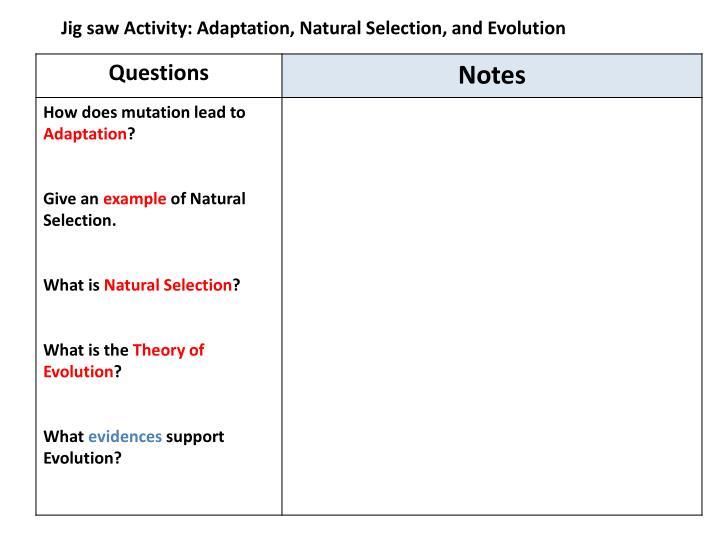 Jig saw Activity: Adaptation, Natural Selection, and Evolution